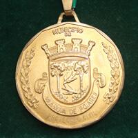 Proteção Civil – Medalha de Ouro da Câmara Municipal de V.N. Poiares